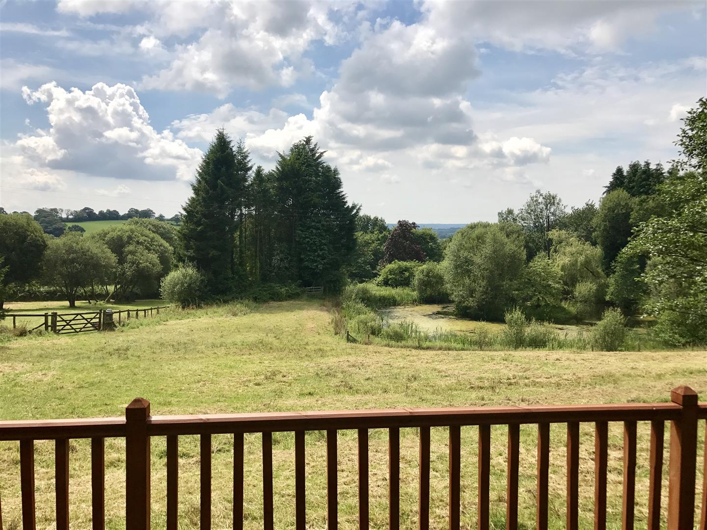 A VIEW FROM THE SUMMER HOUSE